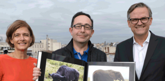 Cewe produziert 50-millionstes Fotobuch