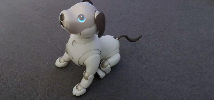 Roboterhund Aibo will gestreichelt werden